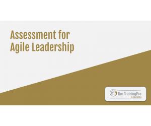 Agile Leadership Assessment